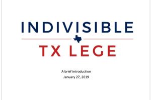 Indivisible Houston TX Lege Intro